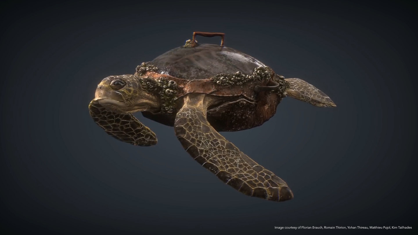 Turtle in 3D