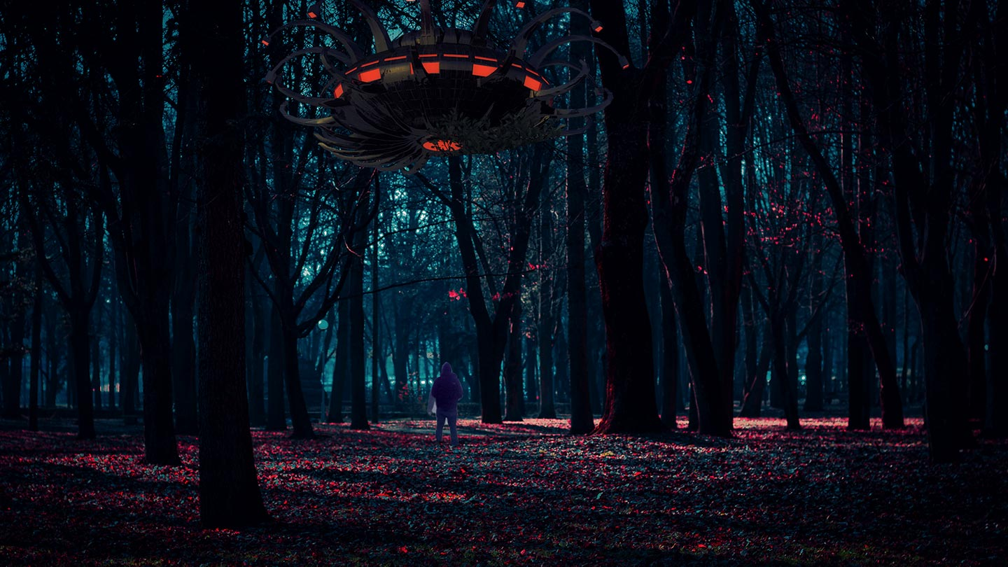 UFO in the forest in AR