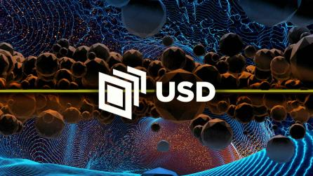 USD explainer guide
