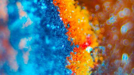 Abstract colorful imagery
