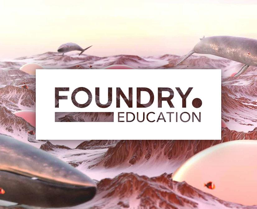 Foundry Education Programme