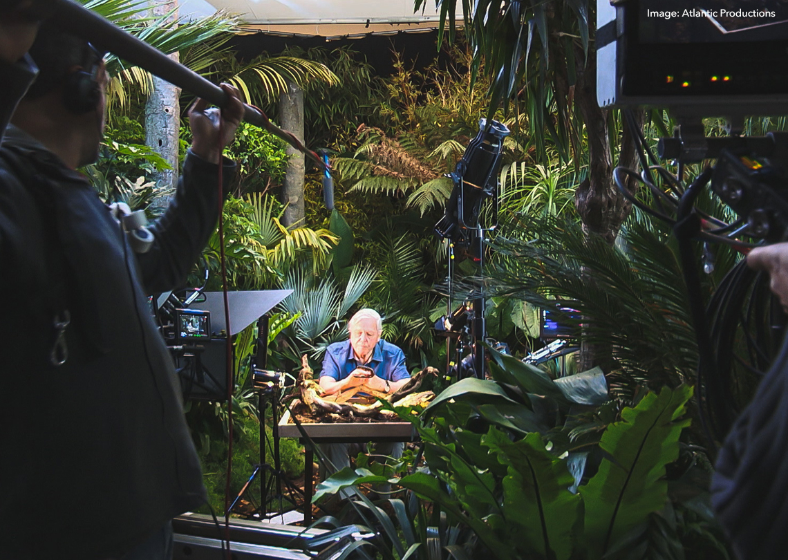 David Attenborough onset of Micro Monsters